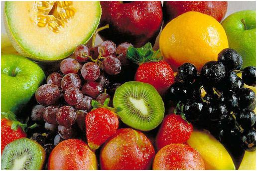 Beginning an natural food maintain